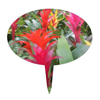 Cake Topper - Bromeliad Forest