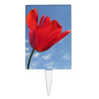 Cake Topper - Red Tulip Blue Sky