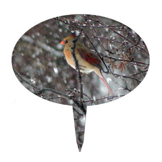 cake topper with photo of female cardinal
