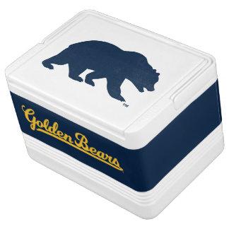 Cal Blue Bear Cooler