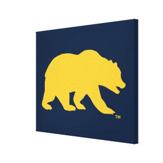 Cal Golden Bear Canvas Print