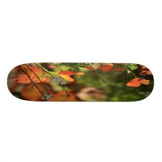 cal poppy skateboard