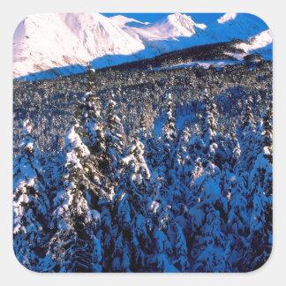 Cala Alaska del barranco de Kenai Ains del parque Pegatina Cuadrada