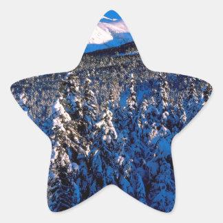 Cala Alaska del barranco de Kenai Ains del parque Pegatina En Forma De Estrella