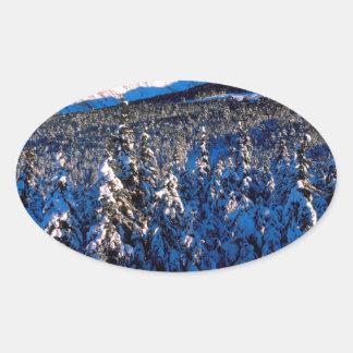 Cala Alaska del barranco de Kenai Ains del parque Pegatina Ovalada