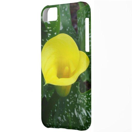 Cala amarilla carcasa iPhone 5C