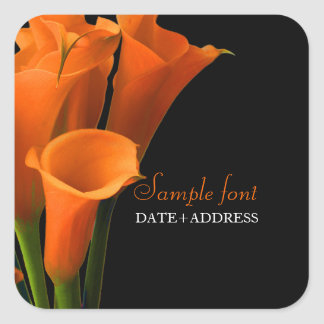 Cala anaranjada de PixDezines/color de fondo diy Pegatina Cuadrada