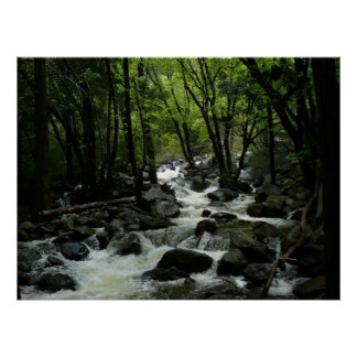 Cala de Bridalveil en el parque nacional de Póster