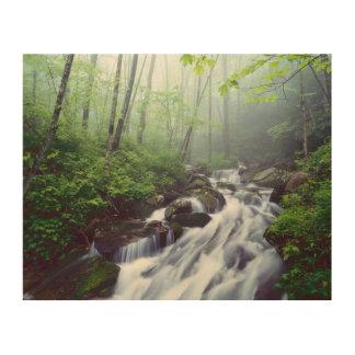 Cala de la ensenada de Linn que conecta en cascada Cuadros De Madera