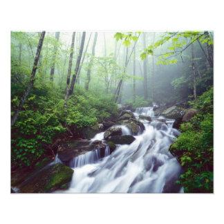 Cala de la ensenada de Linn que conecta en cascada Fotografía