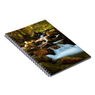 Cala de la montaña cuaderno