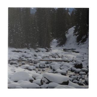 Cala de la mota de la soda Nevado en Yellowstone Azulejo Cuadrado Pequeño