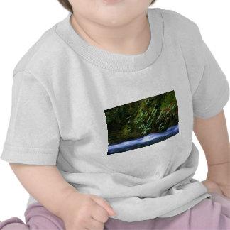 Cala de la sal en las ilustraciones azules de la p camisetas