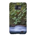 Cala de la sal, Oregon Galaxy S2 Carcasa