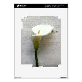 cala en piel del iPad 3 de la escritura iPad 3 Skins