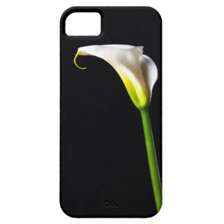 Cala iPhone 5 Case-Mate Protector