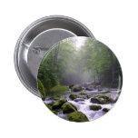 Cala grande en Great Smoky Mountains Pin