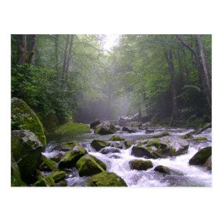 Cala grande en Great Smoky Mountains Postales