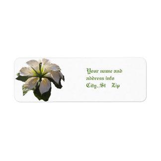 Cala Lilly Bouquet~Label Etiquetas De Remite