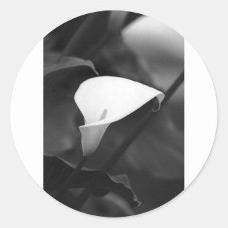 Cala-Lilly Flower Classic Round Sticker