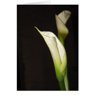 Cala Lily Duo Card