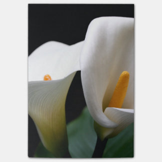 Cala Lily Post-it® Notes