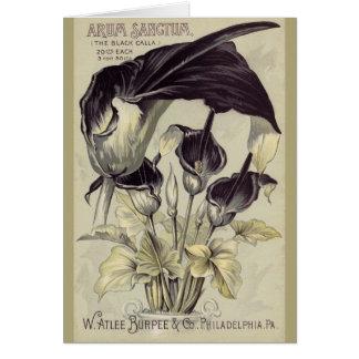 Cala negra Lillies del vintage Tarjeta De Felicitación