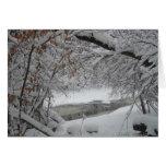 Cala Nevado a través de los árboles Tarjetas