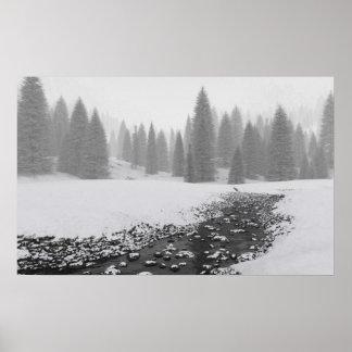 Cala Nevado Póster