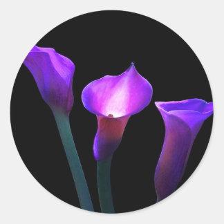 cala púrpura pegatina redonda