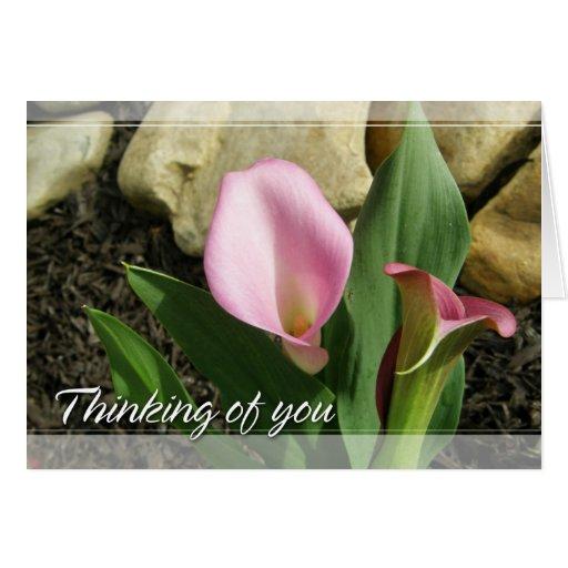 Cala que piensa en usted tarjeta de felicitación