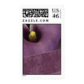Cala - sello lavendar