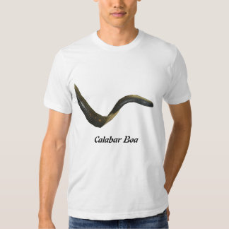 Calabar Boa American Apparel T-Shirt