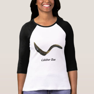 Calabar Boa Ladies 3/4 Sleeve Raglan T-Shirt