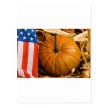 Calabaza americana patriótica tarjetas postales