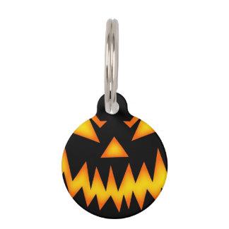 Calabaza asustadiza de Halloween Identificador Para Mascotas