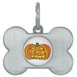 Calabaza de Halloween/linterna de Jack-o' Placa De Nombre De Mascota