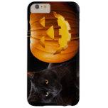 Calabaza de Halloween y gato negro Funda Barely There iPhone 6 Plus