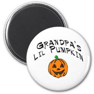 Calabaza de Lil de los abuelos Imán Para Frigorifico