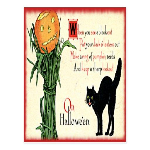 Calabaza del gato negro de Halloween del vintage Postal