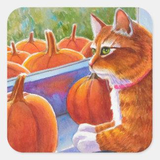 Calabaza, gato de la calabaza pegatina cuadrada