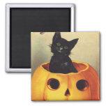 Calabaza linda sonriente del gato negro de Hallowe Imán De Frigorifico