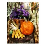 Calabaza, maíz y asteres tarjetas postales