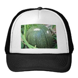 Calabaza verde gorras
