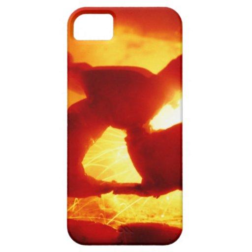 Calabaza vivaracha de Halloween iPhone 5 Case-Mate Protector