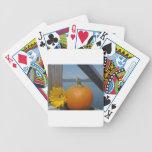 Calabaza y girasol en el lago barajas de cartas