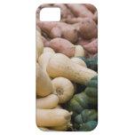 Calabaza y patatas dulces iPhone 5 fundas