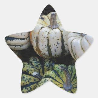 Calabazas, calabazas, cosecha de la caída pegatina en forma de estrella