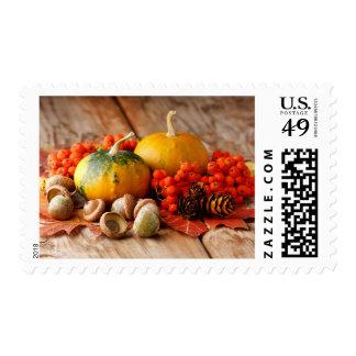 Calabazas cosechadas con las hojas de la caída timbre postal