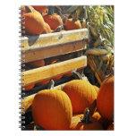 Calabazas Cuadernos
